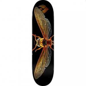 Powell Peralta Flight Potter Wasp (Shape 247) 8.0 ― Canada's Online Skate Shop